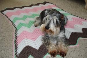 Ingrid's Afghans - specializing in blankets for Cancer Patients - IngridTurnerToday.com
